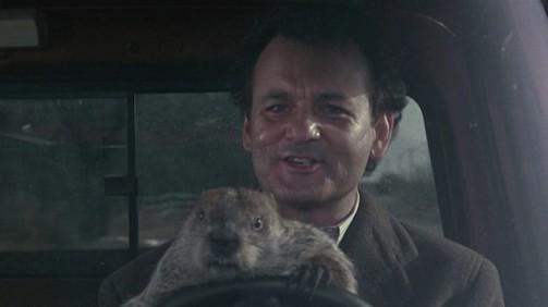 groundhog-day-movie-download-english-subtitles